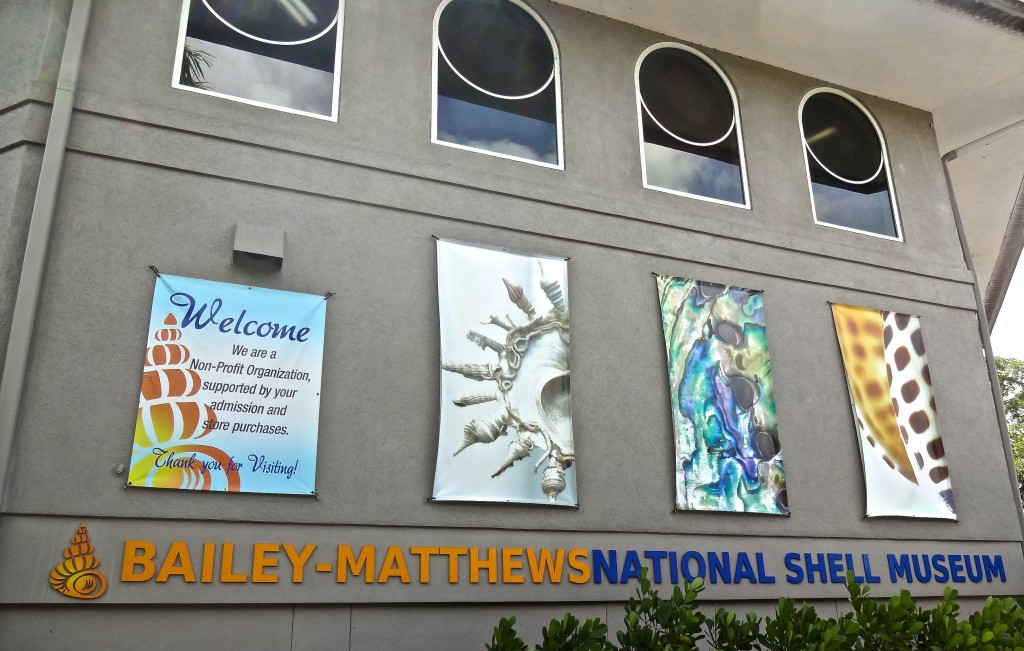Bailey Matthews Shell Museum Sanibel Island – In Photos